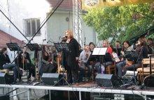 Irské balady a romance Olešnice 4. června 2010